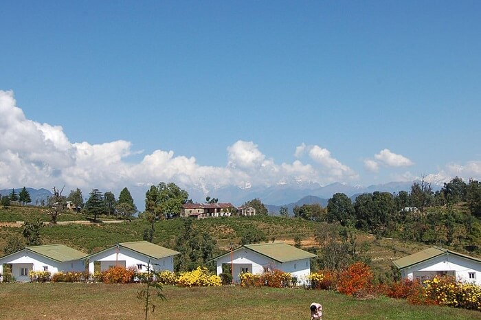 Beautiful and peaceful looking Chaukori area in Uttarakhand