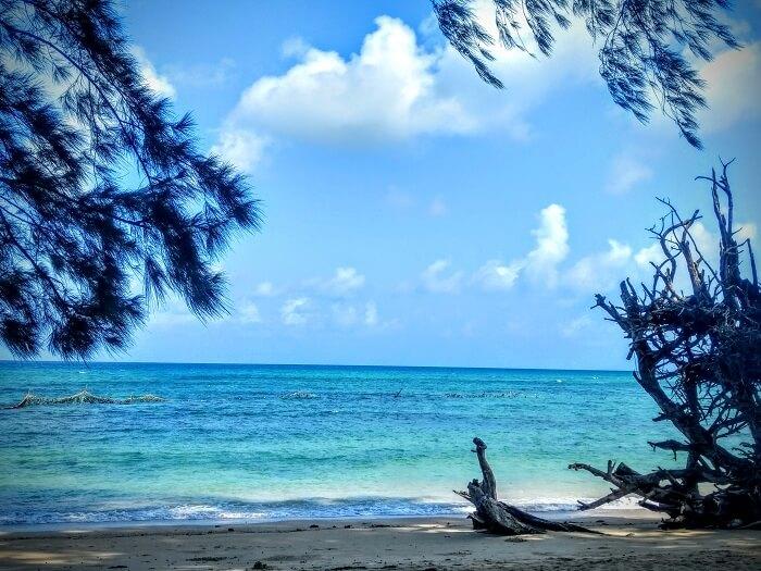 Wandoor beach in Port Blair