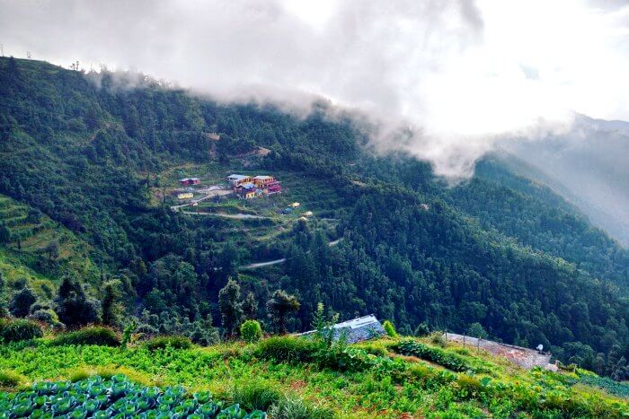 Hilly pastures of Dhanaulti and the mist