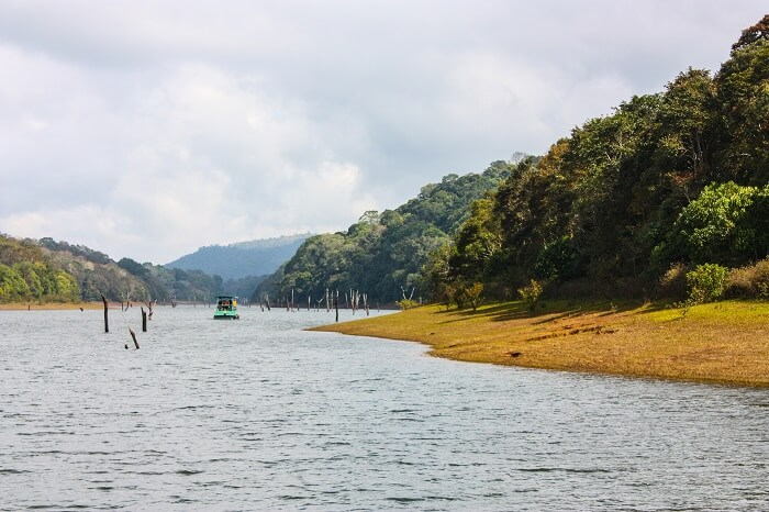 A shot of the calm Periyar Lake by the side of the Periyar Tiger Reserve in Kerala