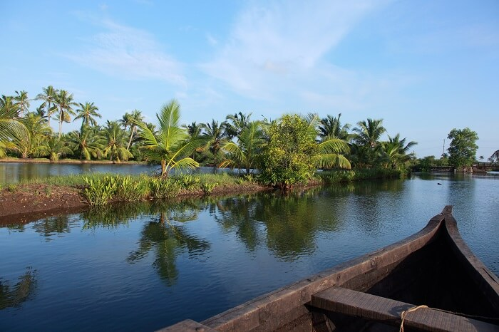 A shot from a wooden boat cruise in backwaters canals of Ashtamudi lake in Kerala