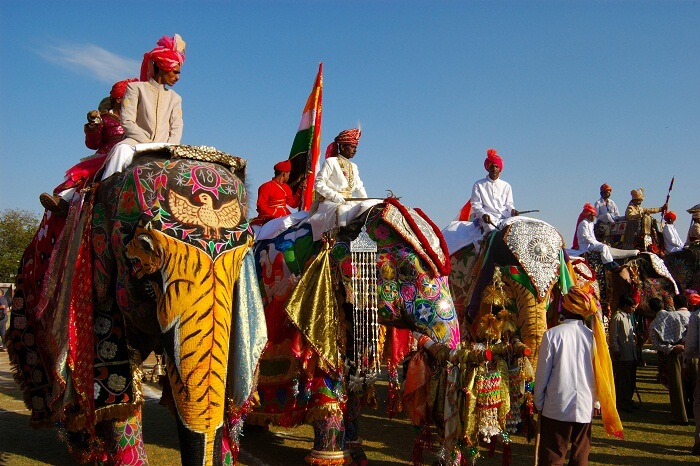 Decorated elephants standing at the inauguration of the Elephant Fair in Rajasthan