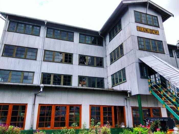 the glenloch tea factory in nuwara eliya