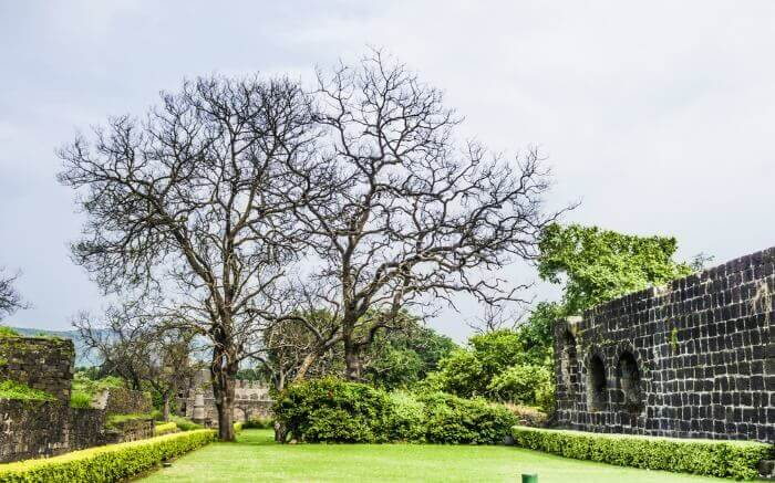 Lush green garden in Daulatabad Fort which is one of the famous forts in India