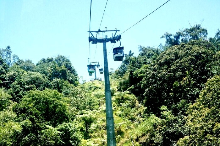 Adventurous cable car ride
