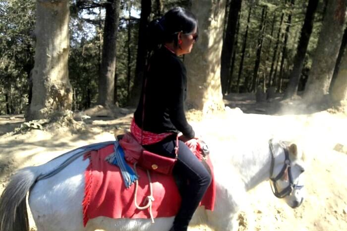 Going off road on a horse in Himachal