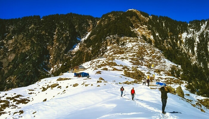 Triund Trekking in Mcleodganj