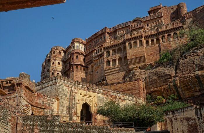 The Jazzy Jodhpur