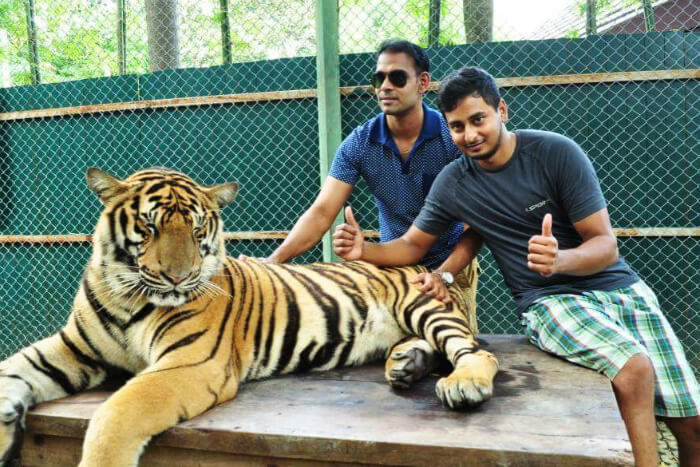 karthik & his friend at tiger kingdom cover