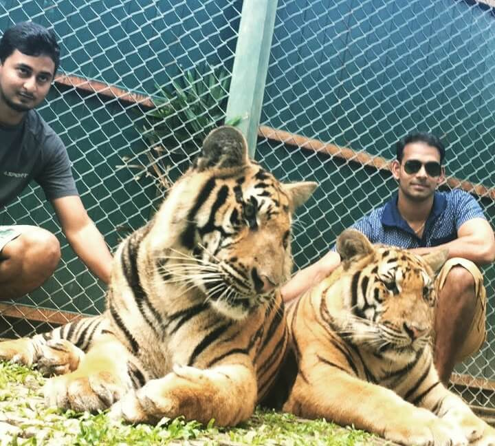 karthik & his friend taking pictures with tigers