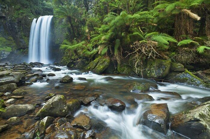 Serene waterfall at Otway National Park