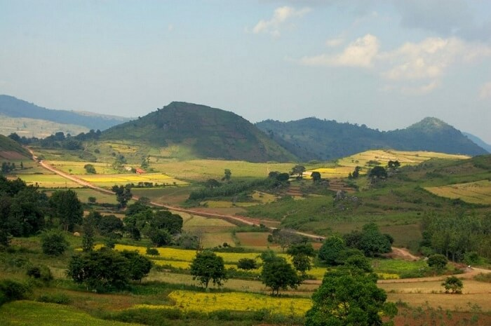 A snap of the sunkissed Araku Valley