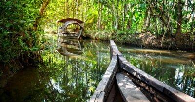 A boat crossing a mangrove in Goa