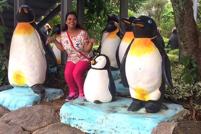 having fun with penguins in Pattaya