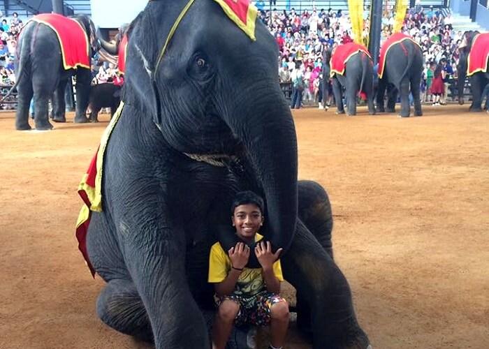 Elephant show in Safari World
