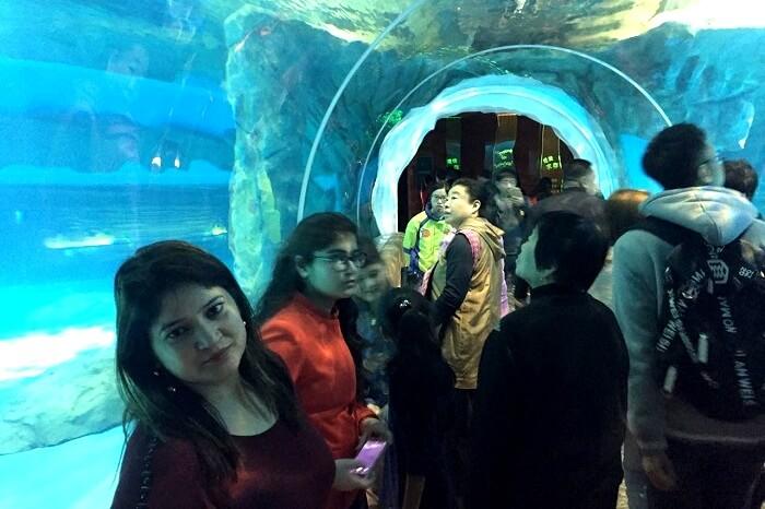 Witness the underwater creatures in Disneyland