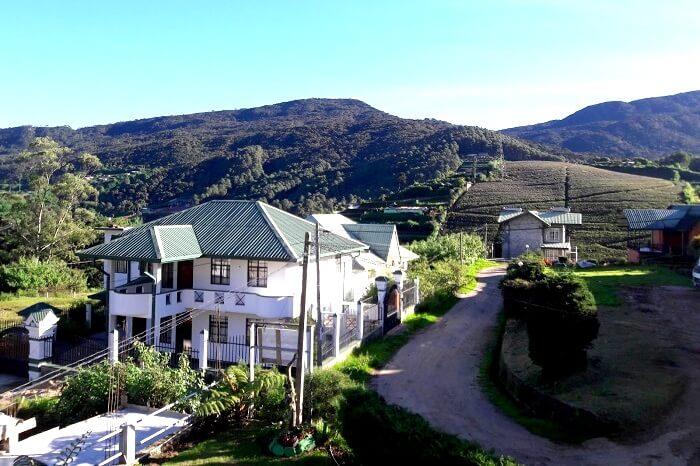 beautiful morning in Nuwara Eliya