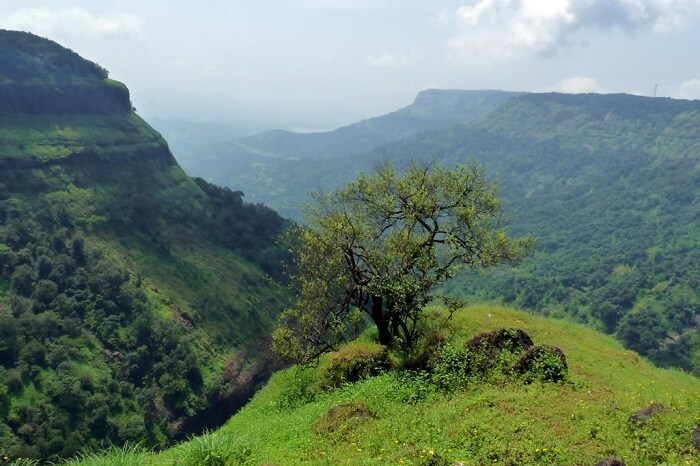 One tree hill point in Matheran