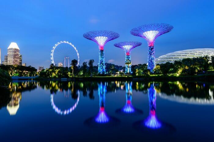 Illuminated garden of Singapore