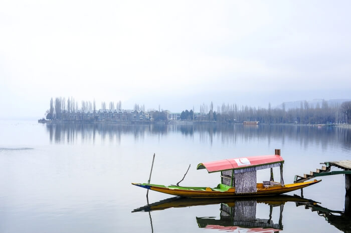 Lone boat standing on the shore in Dal Lake