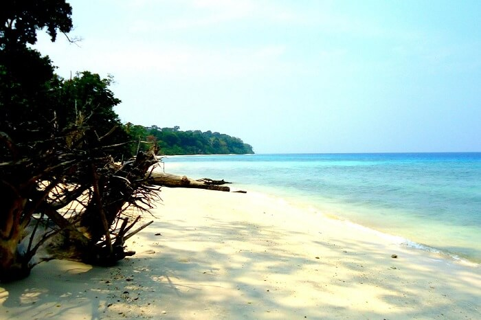 The calm waters and tropical vegetation on the unspoilt Elephant Beach of Havelock Island