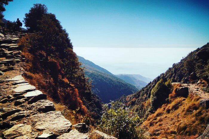 reaching new heights in mcleodganj