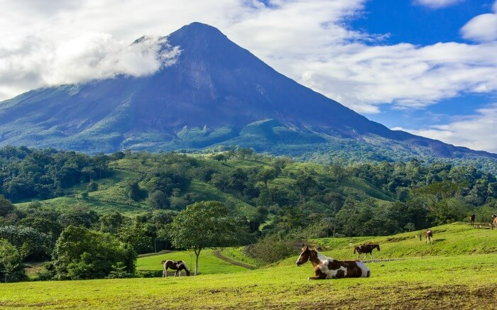View of Arenal Volcano National Park