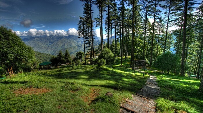natural attractions in Dhanaulti