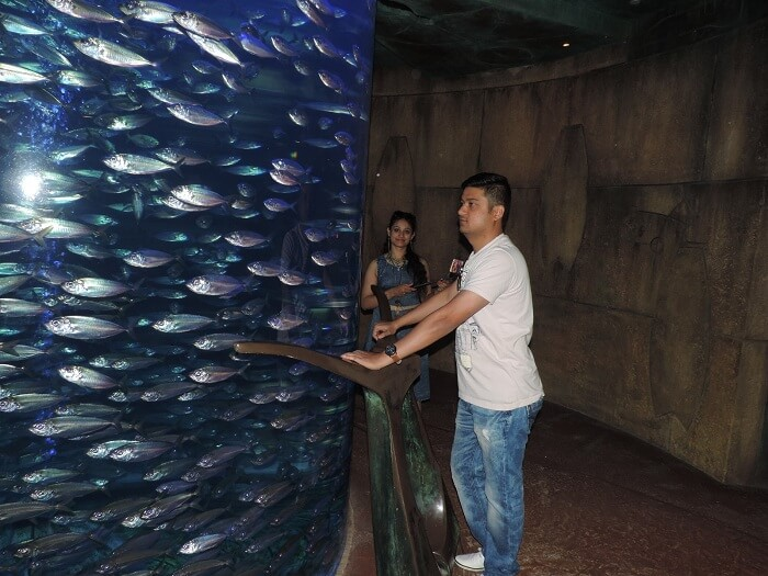 Marine park in Dubai