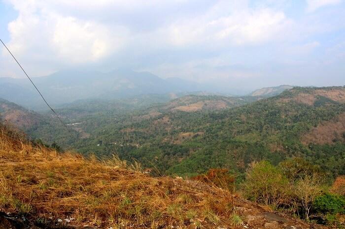 munnar mountain range