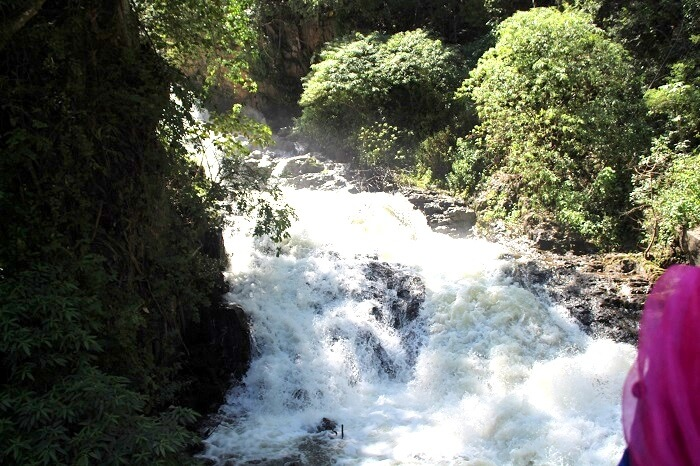 stream on the way to thekkady
