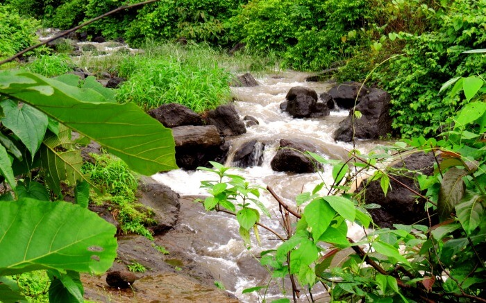 A stream in Karjat which is one of the ideal honeymoon places near Pune