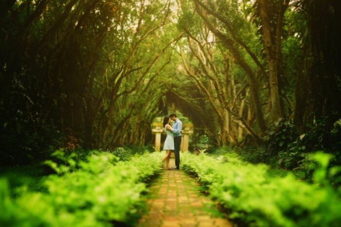 Couple on a honeymoon posing for a photoshoot in a woods