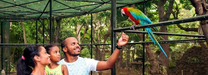 Bird Aviary in Casela Nature Park