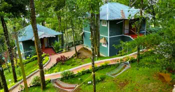 Best Budget Hotels In Munnar