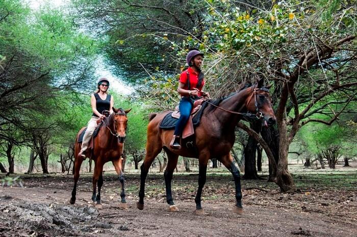 Horse riding activity in Casela