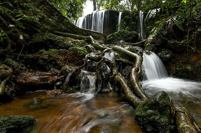 A snap of a waterfall in the rainforests of Agumbe in Karnataka