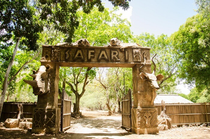 Safari Kingdom in Casela Nature Park