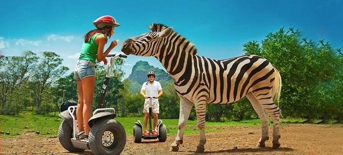 Segway safari in Casela Nature Park
