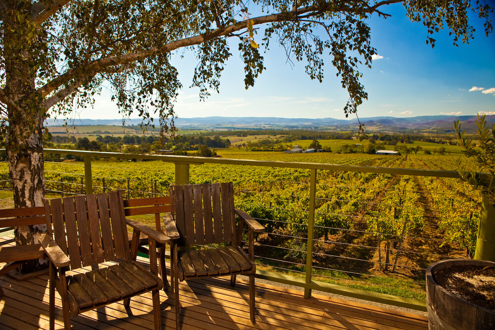 Wooden chairs under tree shade at Yarra Winery