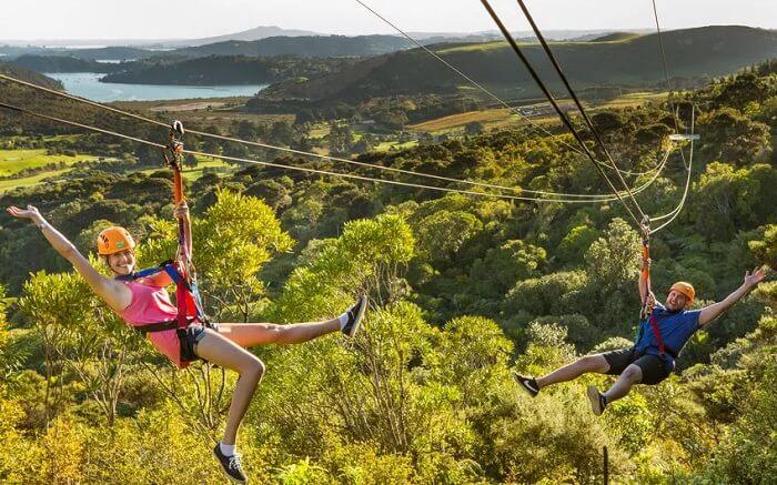 Adventure seekers enjoying ziplining at Waiheke Island