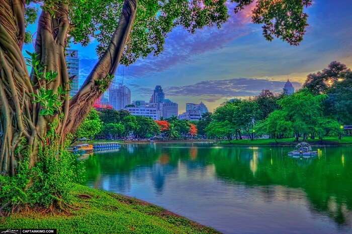 Lumpini Park Bangkok Before Sunrise