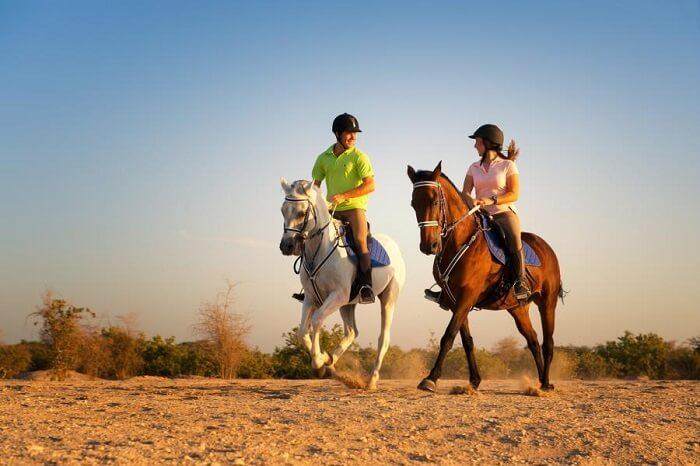 Arabian horse riding in Dubai