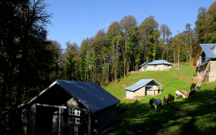 Camps in Himachal