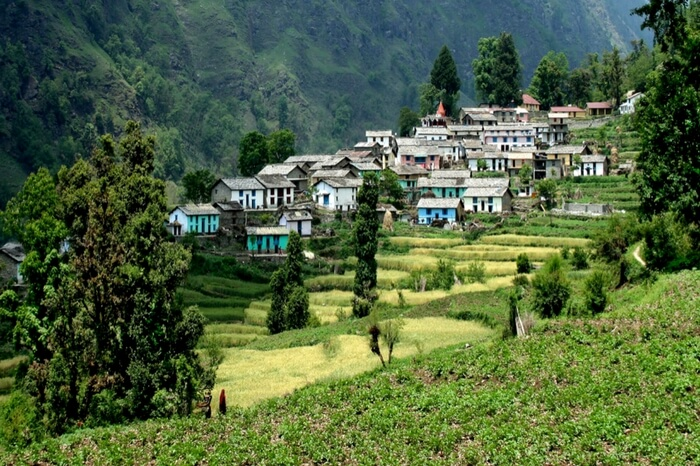 Houses on a hill slope in Ranikhet