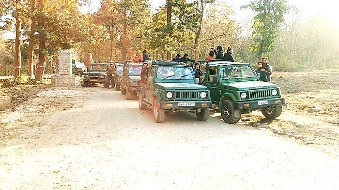 Jim Corbett Safari