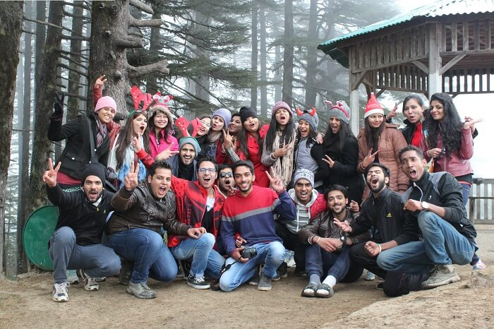 A group of travelers pose in front of a viewpoint in the woods in Dhanaulti