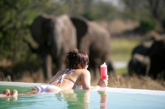 A honeymooner relaxing in a pool during safari honeymoon in South Africa