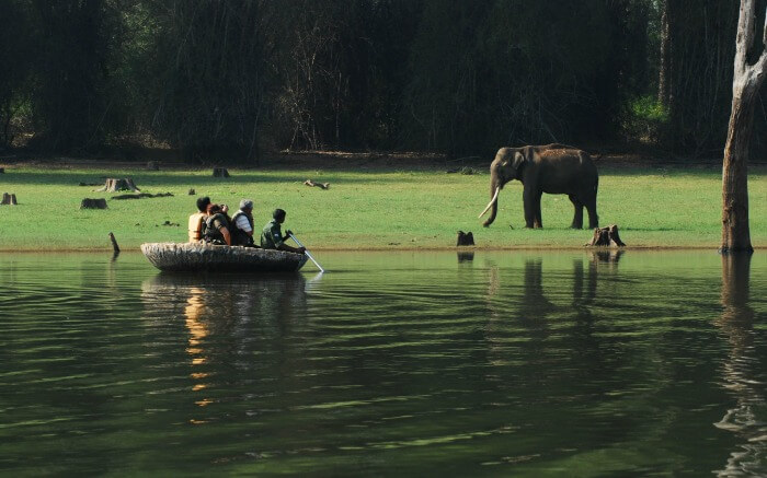 Travelers enjoying an ecotour in a lake in Kerala