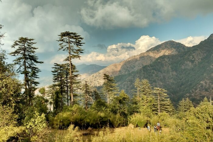 Picturesque mountains and greenery in Dehradun